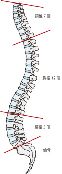 ヘルニア 自然 治癒 頚椎